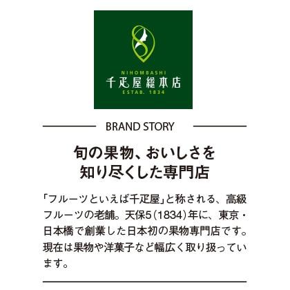 [日本橋 千疋屋総本店]フルーツケーキ