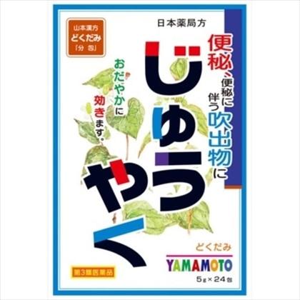 山本漢方 日本薬局方 じゅうやく 5g×24包[第3類医薬品]