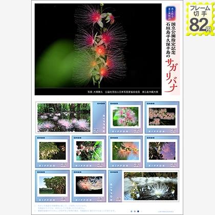 夜を彩る夏の風物詩 国立公園指定記念 石垣島平久保半島のサガリバナ