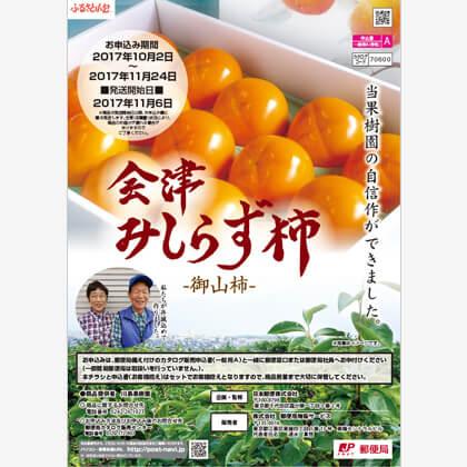 会津みしらず柿5kg(2L)
