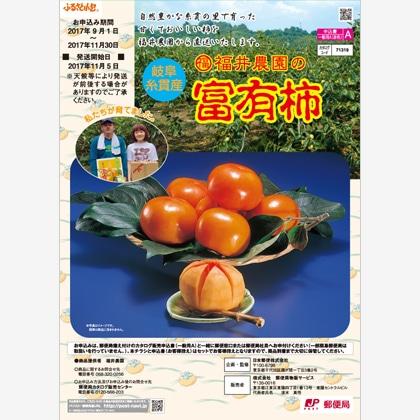 富有柿 3.3kg(2L)