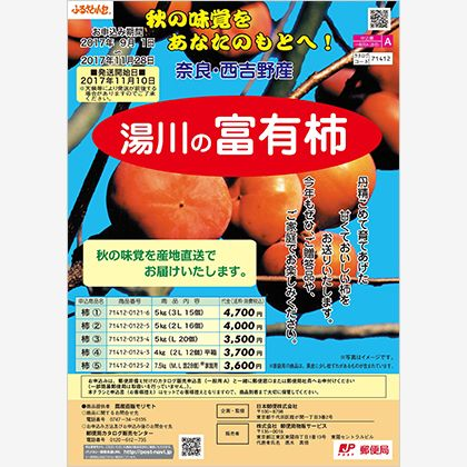 湯川の富有柿5kg(2L)