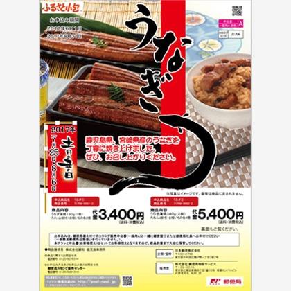 うなぎ蒲焼2尾