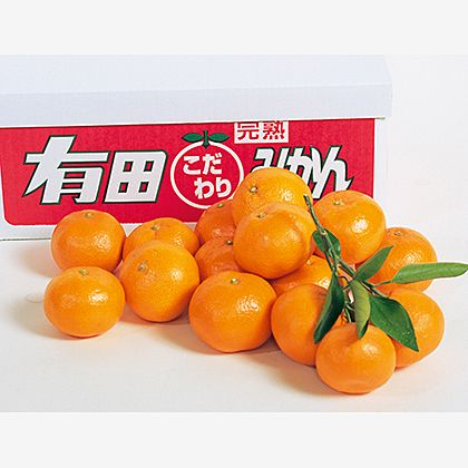 武内園の有田みかん(家庭用) 8kg