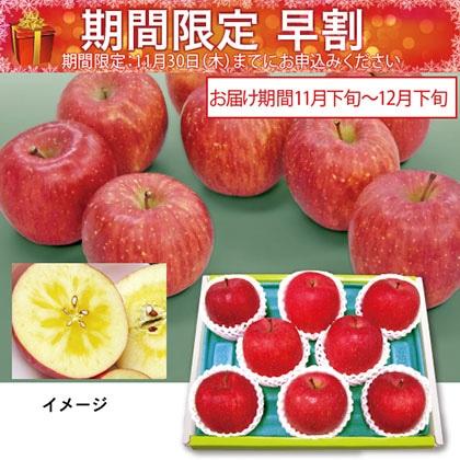 青森産(蜜入)サンふじりんご
