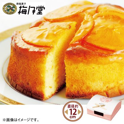 長崎梅月堂 ちょっとレトロなオレンジケーキ