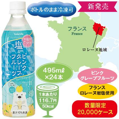 養命酒製造 塩とピンクグレープフルーツ