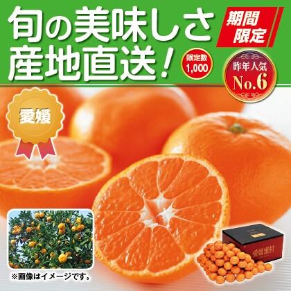 愛媛みかん(家庭用)9kg
