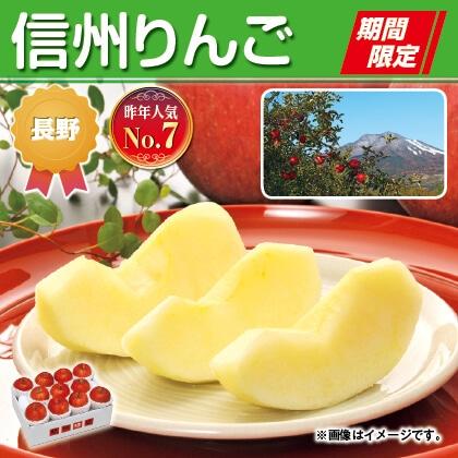 信州リンゴ 3kg 特秀