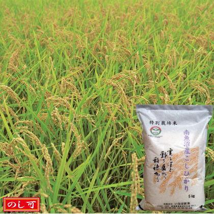 南魚沼産コシヒカリ特別栽培米5kg