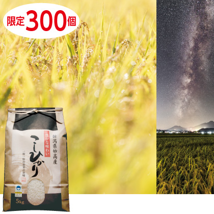 特別栽培米 妙高産コシヒカリ 5kg