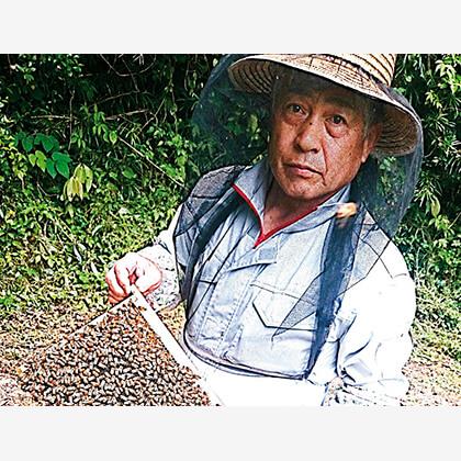 蜂蜜詰合せ B