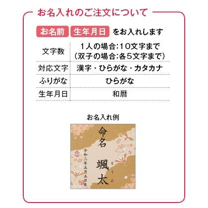 紅白餅&紅白麺セット(大)(お名入れ)