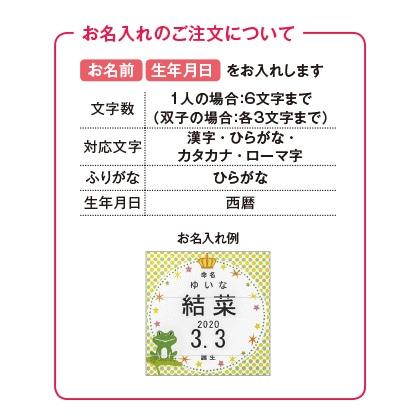 フロッシュ 洗剤キッチンギフトB(お名入れ) 写真入りメッセージカード(有料)込