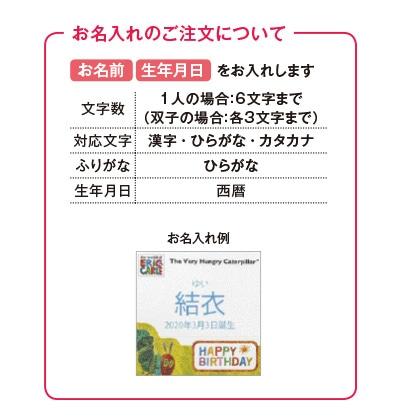 はらぺこあおむしキッチン洗剤タオルセットB(お名入れ) 写真入りメッセージカード(有料)込