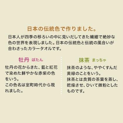 おぼろ日本の伝統色 浴用タオル2枚セット