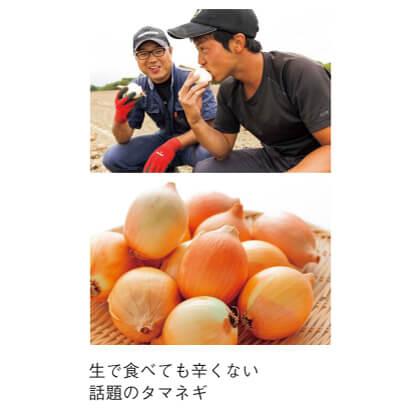 [ハウス食品]スマイルボール「栗山スイート」(タマネギ)