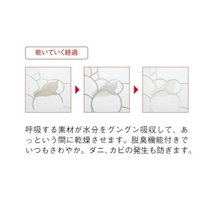 珪藻土 足快バスマット レギュラー(バブル)