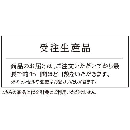 銀製 靴ベラ(イニシャルなし)