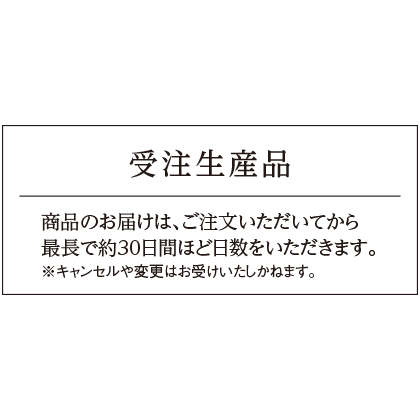 Pt999甲丸リング(19号)