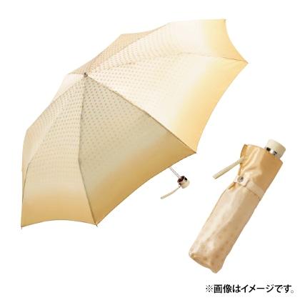 〈ピエール・カルダン〉婦人耐風折りたたみ雨傘(ネイビー)