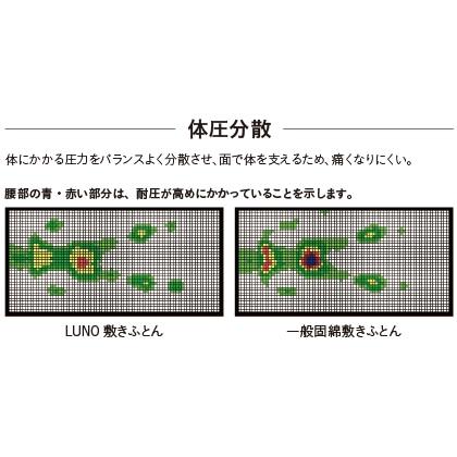 〈LUNO〉高反発三つ折り敷きふとん(シングル)
