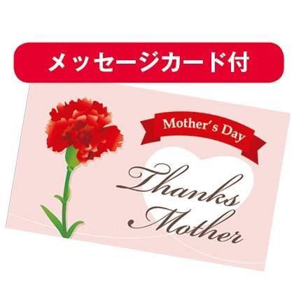 母の日花束+本高砂屋エコルセ