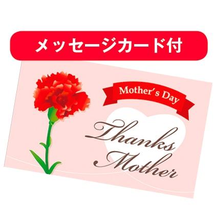 井筒の三笠「母の日」