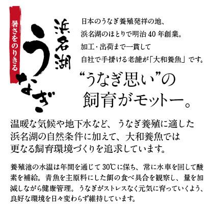 三ヶ日みかん配合 浜名湖うなぎ蒲焼3本