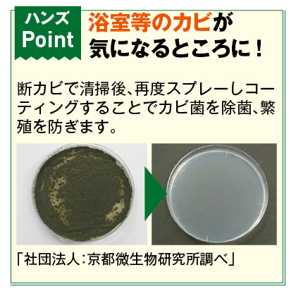 カビ取り・防カビ洗浄剤断カビセット