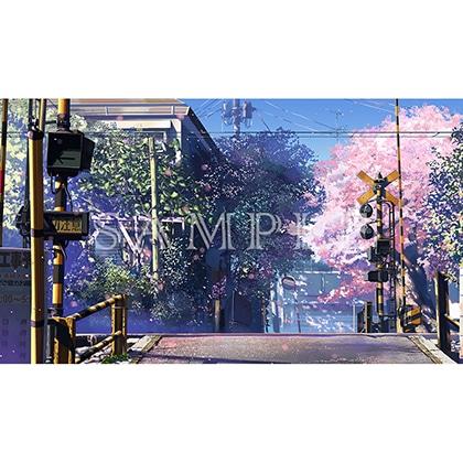 新海誠作品 Still Photography Collection 秒速5センチメートル TypeC