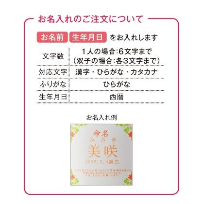 名入れ今治タオルバス・ウォッシュタオルセット(お名入れ)【慶事用】