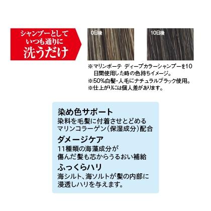 〈マリンボーテ〉 カラーシャンプー(ブラック)2本