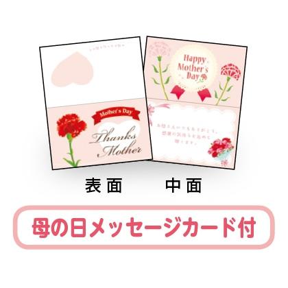 <※母の日対象商品>メッセージ入り白雪富士と赤い富士りんご