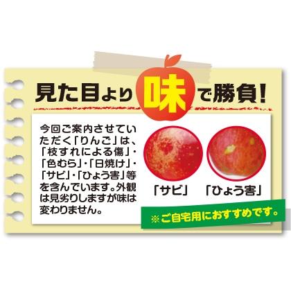 長野県産お買い得!サンふじB(1月〜2月のお届け)