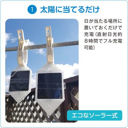 ソーラーライト キャリー・ザ・サン(ウォームライト2個)