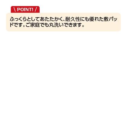 <西川>あたたかアクリル敷パッド シングル(ベージュ)