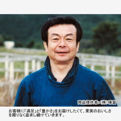 【期間限定商品】岡山産ニューピオーネ