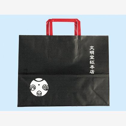 カステラカット 2箱入(手提袋付)