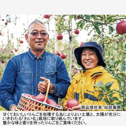 【期間限定】 贈答用サンふじ・王林 特選大玉 化粧箱入