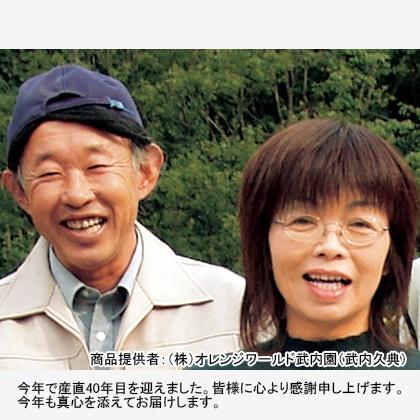 【期間限定】 武内園の有田みかん(家庭用) 8kg