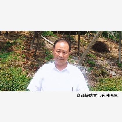 甘平(カンペイ) 1.5kg  【2022年2月3日以降発送】