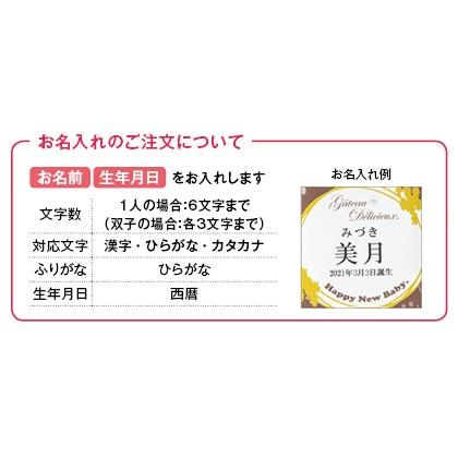 ガトー・デリシュー 焼菓子9個詰合せ(お名入れ)【出産内祝い用】