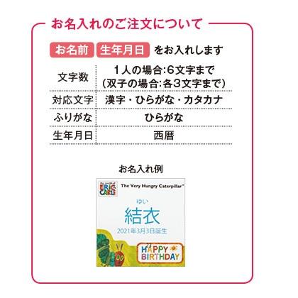 はらぺこあおむし キッチン洗剤タオルセットB(お名入れ)【出産内祝い用】
