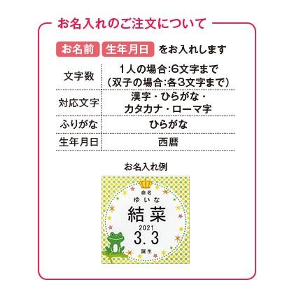 フロッシュ 洗剤キッチンギフトB(お名入れ)【出産内祝い用】