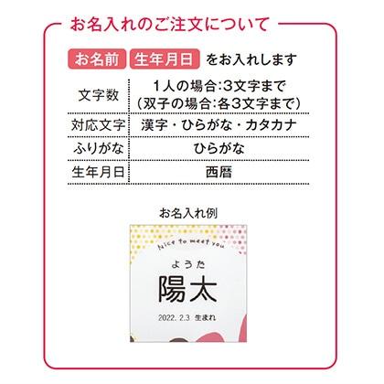 アニマルドーナツ6個入(お名入れ)【出産祝い用】