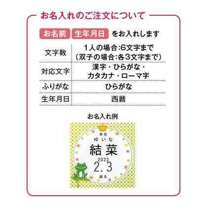フロッシュ 洗剤キッチンギフトC(お名入れ)【出産祝い用】