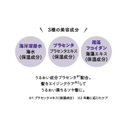 〈沖縄美髪魅〉詰替用 ミガミシャンプー