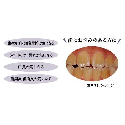 ホワイトポリテクト 薬用デンタルジェルEX