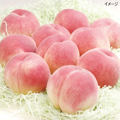 <※お中元対象商品>春日居の桃